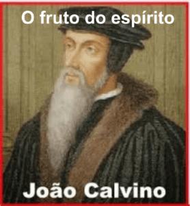 calvino o fruto do espírito