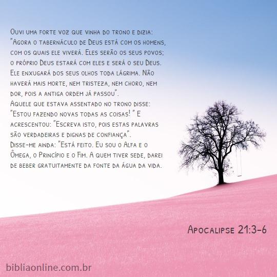 palavra de conforto espiritual